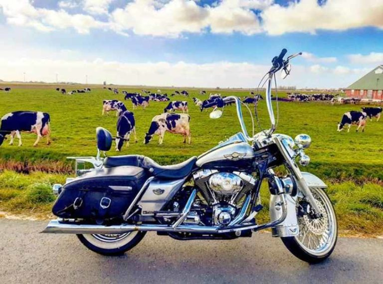 Best Tires For Harley Road King